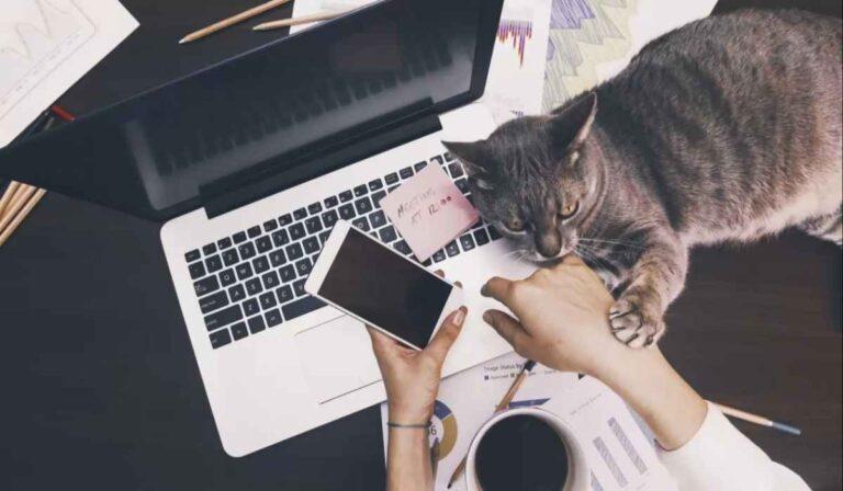 Cómo mantenerse motivado trabajando desde casa