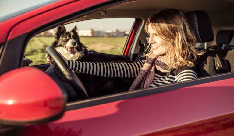 Una reseña completa de CitizenShipper para clientes y conductores