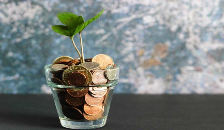 10 ideas de negocios sostenibles para esta nueva década